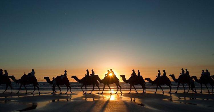 Camel Riding Azul Guesthouse Agadir