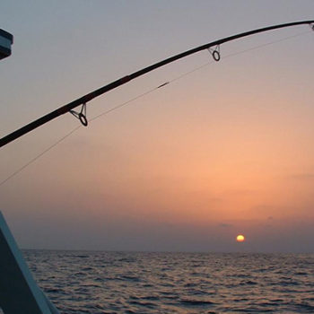 Fishing Excursions Azul Guesthouse Agadir