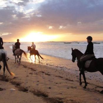 Horseback riding Azul Guesthouse Agadir