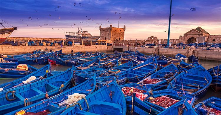 Visit Essaouira Azul Guesthouse Agadir