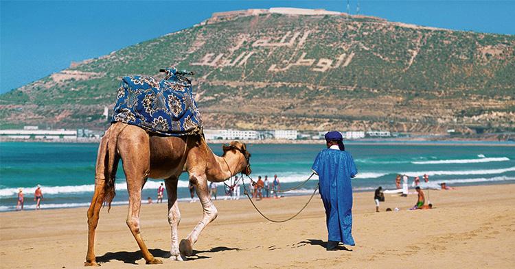 Discover Agadir Azul Guesthouse Agadir
